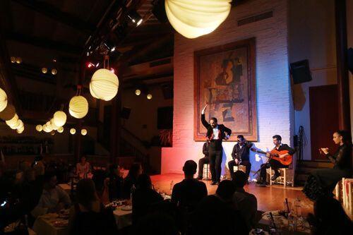 spettacolo flamenco Barcellona