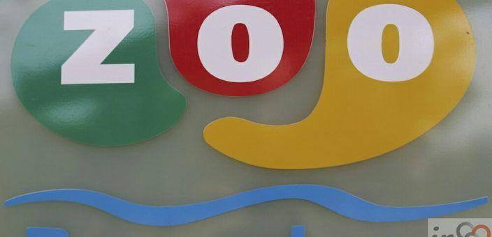 Zoo Barcellona