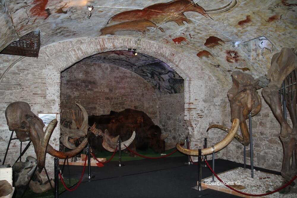 sala Museo Mammut