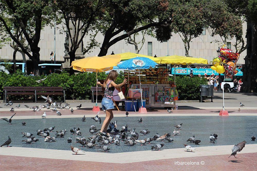 ragazza che gioca con i piccioni