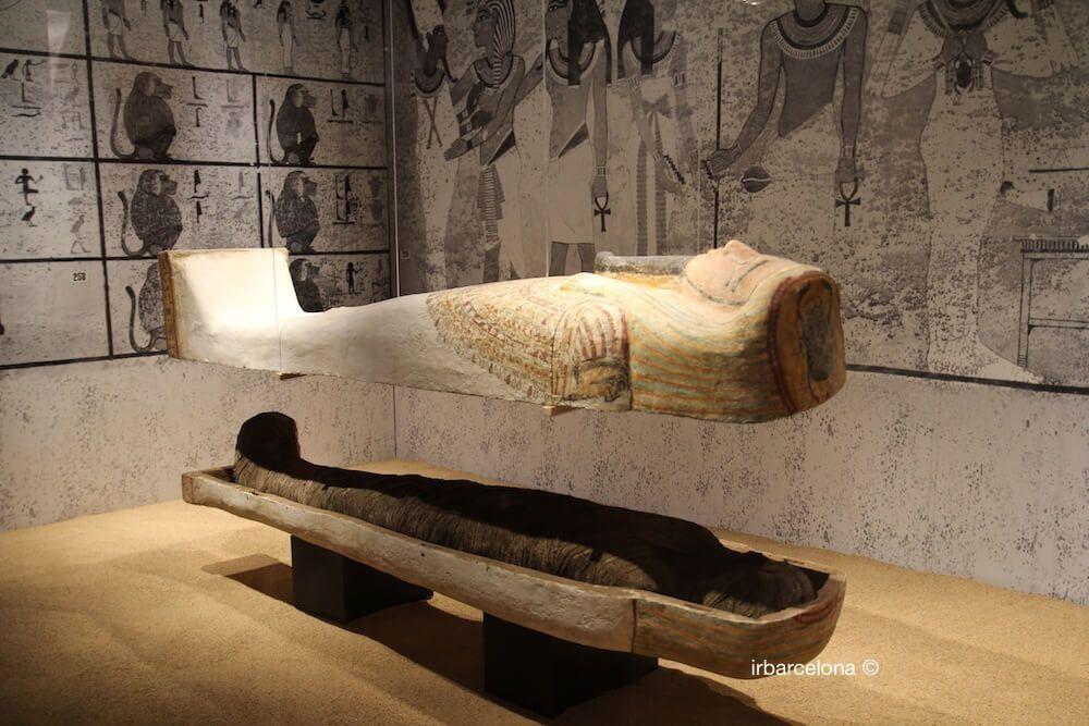 entradas Museo Egizio