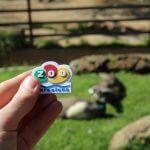 calamita Zoo Barcellona