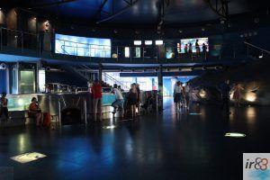 interno Acquario di Barcellona