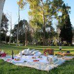 picnic nel parco