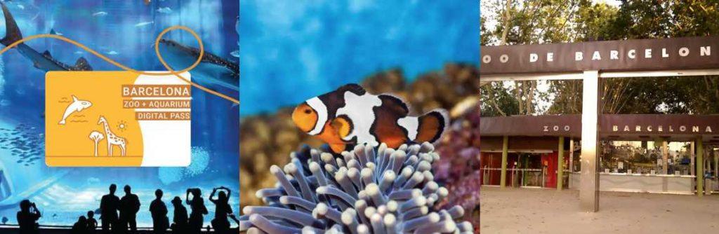 Aquarium + Zoo Barcellona
